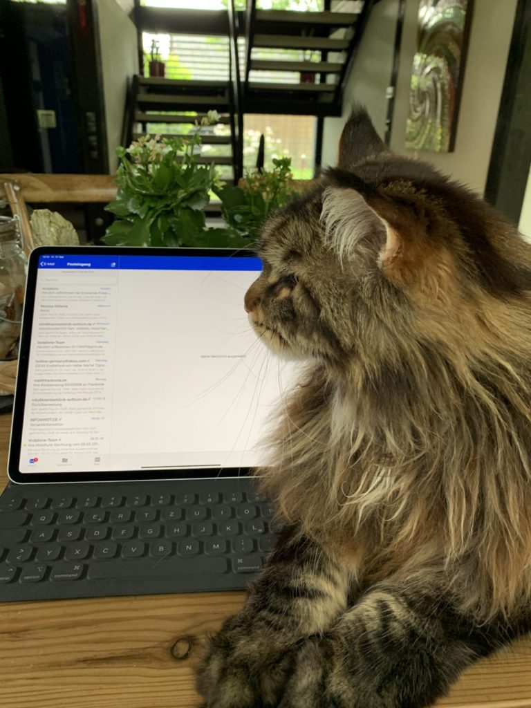 Emil - Assistent der Geschäftsführung